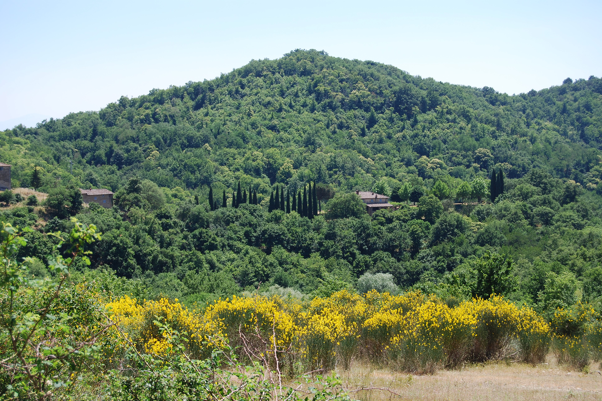 A1. The hill of Cetamura del Chianti-1920x1280